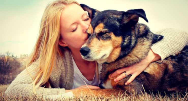 app-para-adoptar-mascotas-mamitech