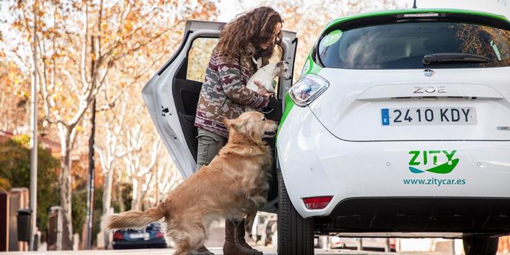 zity car charing mamitech